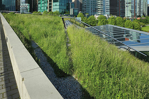 Green Roof Systems with Polyurethane Water Storage Mats