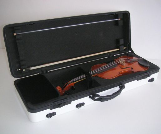 Foam Insert for a violin